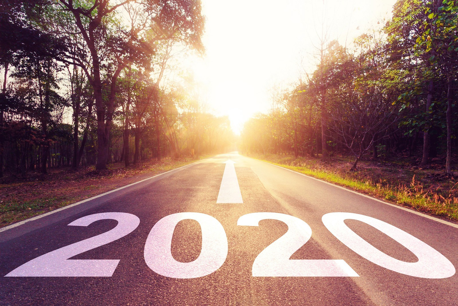Legnépszerűbb írásaink 2020 ban
