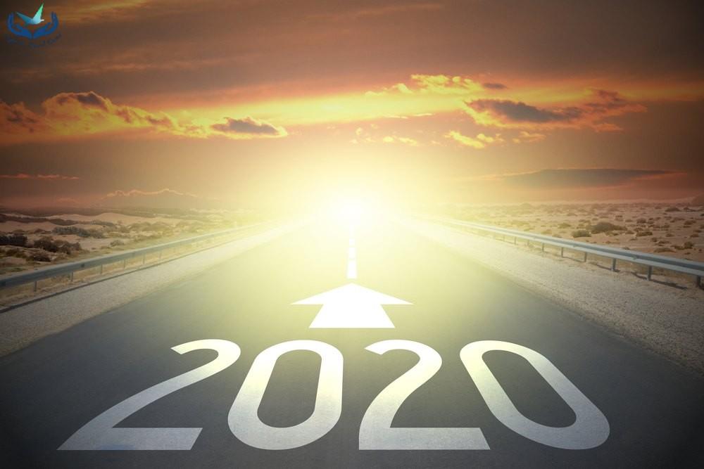 Legnépszerűbb írásaink 2020-ban